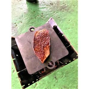極厚9mm鉄板ミニ ソロキャンプ 鉄板 安い|tasiro