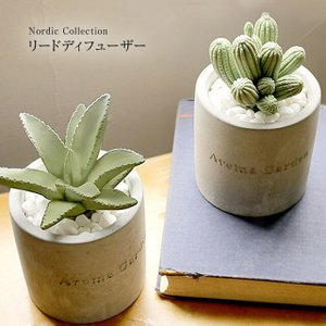 メルシーユ/ MERCYU MRU-73 サボテンのリードディフューザー ノルディックコレクション  本物の多肉植物のような可愛らしいリードディフューザー|tasukurashi