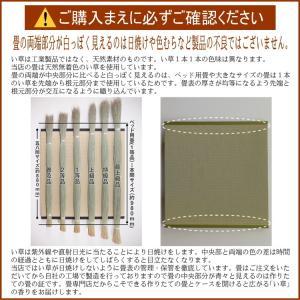 畳ベッド セミダブル 日本製 ヘッドレス マットレス 高さ調整 パーチェ【収納付き】 選べる畳3タイプ tatamikouhinn 06
