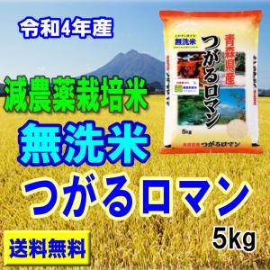 無洗米 29年産 減農薬米 青森 つがるロマン5kg ひろさ...