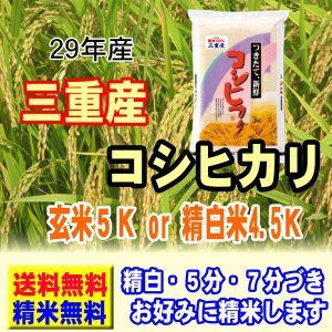 29年産 三重産 コシヒカリ 5kg  送料無料 玄米 白米...