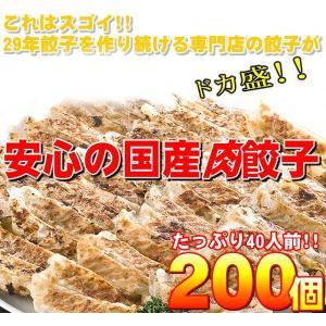 〔ワケあり〕安心の国産餃子200個 40人前|tayasu