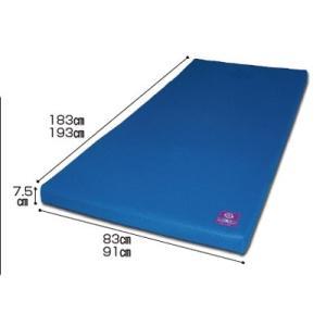 RAKULA(ラクラ) 3Dコイルマットレス(床ずれ防止 マット 褥瘡予防マット 体圧分散)