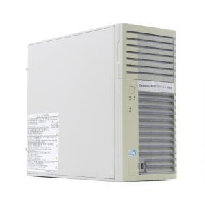NEC Express5800/GT110e Pentium G2020 2.9GHz 4GB 160GBx2台(SATA3.5インチ/RAID1) DVD SuperTrak EX SAS 6G RAID Controller