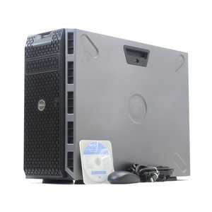 DELL PowerEdge T320 Xeon E5-2407v2 2.4GHz 32GB 1TBx2台(SAS3.5インチ/6Gbps/RAID1構成) DVD+-RW PERC H310
