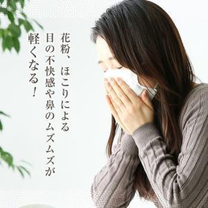 べにふうき茶 緑茶 お試し品 鹿児島産 茶葉100g粉末40g お茶 送料無料 tea-sanrokuen 04