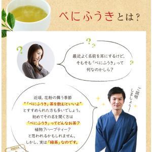 べにふうき茶 緑茶 お試し品 鹿児島産 茶葉100g粉末40g お茶 送料無料 tea-sanrokuen 05