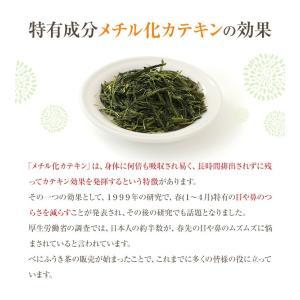 べにふうき茶 緑茶 お試し品 鹿児島産 茶葉100g粉末40g お茶 送料無料 tea-sanrokuen 07