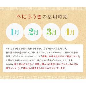 べにふうき茶 緑茶 お試し品 鹿児島産 茶葉100g粉末40g お茶 送料無料 tea-sanrokuen 09