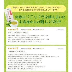 べにふうき茶 緑茶 お試し品 鹿児島産 茶葉100g粉末40g お茶 送料無料 tea-sanrokuen 10