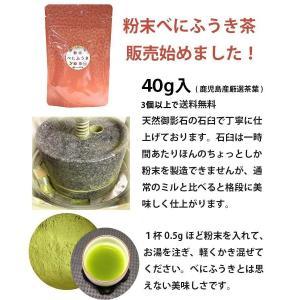 べにふうき茶 緑茶 鹿児島産 茶葉100g/粉末40g お茶 3個以上送料無料 tea-sanrokuen 02