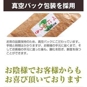べにふうき茶 緑茶 鹿児島産 茶葉100g/粉末40g お茶 3個以上送料無料 tea-sanrokuen 05