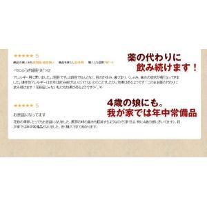 べにふうき茶 緑茶 鹿児島産 茶葉100g/粉末40g お茶 3個以上送料無料 tea-sanrokuen 07