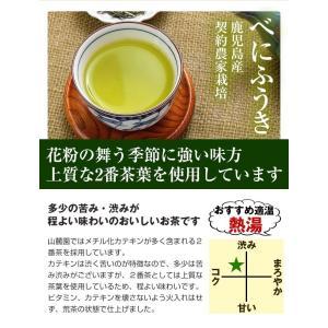 べにふうき茶 緑茶 鹿児島産 茶葉100g/粉末40g お茶 3個以上送料無料 tea-sanrokuen 08