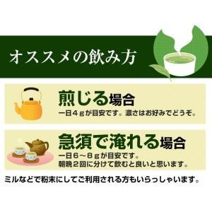 べにふうき茶 緑茶 鹿児島産 茶葉100g/粉末40g お茶 3個以上送料無料 tea-sanrokuen 09