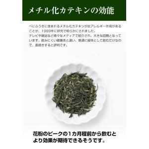 べにふうき茶 緑茶 鹿児島産 茶葉100g/粉末40g お茶 3個以上送料無料 tea-sanrokuen 10