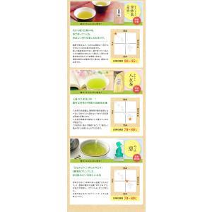 お茶 300g他 選べるお茶の福袋 敬老の日 ギフト 知覧茶 嬉野茶 八女茶 緑茶 茶葉|tea-sanrokuen|11