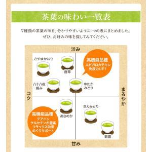 お茶 茶葉 敬老の日プレゼント ギフト 品種別に3個選ぶ 上級茶福袋 煎茶 知覧茶|tea-sanrokuen|13