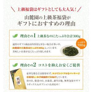 お茶 茶葉 敬老の日プレゼント ギフト 品種別に3個選ぶ 上級茶福袋 煎茶 知覧茶|tea-sanrokuen|15