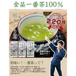 お茶 新茶 熊本ぐり茶 一番摘み 100g 日本茶 煎茶 緑茶 茶葉|tea-sanrokuen|02