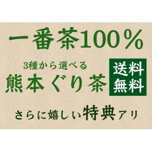 お茶 新茶 熊本ぐり茶 一番摘み 100g 日本茶 煎茶 緑茶 茶葉 3個以上送料無料|tea-sanrokuen|02