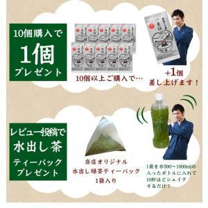 お茶 新茶 熊本ぐり茶 一番摘み 100g 日本茶 煎茶 緑茶 茶葉|tea-sanrokuen|04