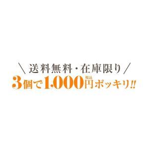 お茶 鹿児島茶 恵 100g×3個 送料無料 緑茶 茶葉 セール|tea-sanrokuen|02