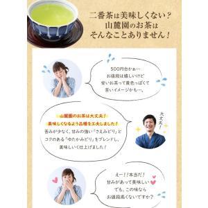 お茶 鹿児島茶 恵 100g×3個 送料無料 緑茶 茶葉 セール|tea-sanrokuen|05