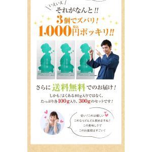 お茶 鹿児島茶 恵 100g×3個 送料無料 緑茶 茶葉 セール|tea-sanrokuen|06