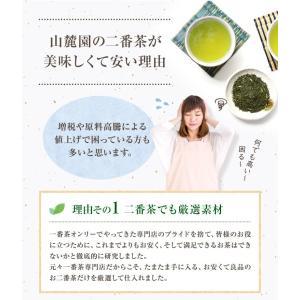 お茶 鹿児島茶 恵 100g×3個 送料無料 緑茶 茶葉 セール|tea-sanrokuen|07