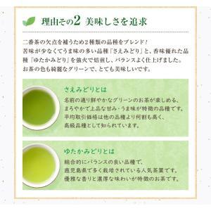 お茶 鹿児島茶 恵 100g×3個 送料無料 緑茶 茶葉 セール|tea-sanrokuen|08