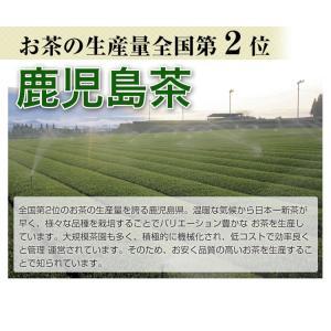 鹿児島茶「桜」 100g 3個以上送料無料 お茶 煎茶 知覧茶使用 ポイント消化|tea-sanrokuen|03