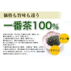 鹿児島茶「桜」 100g 3個以上送料無料 お茶 煎茶 知覧茶使用 ポイント消化|tea-sanrokuen|04