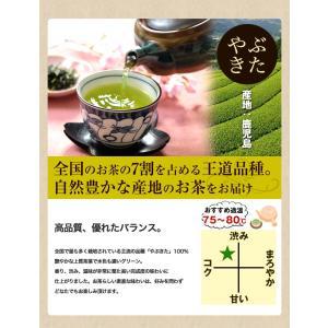 鹿児島茶「桜」 100g 3個以上送料無料 お茶 煎茶 知覧茶使用 ポイント消化|tea-sanrokuen|05