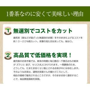 鹿児島茶「桜」 100g 3個以上送料無料 お茶 煎茶 知覧茶使用 ポイント消化|tea-sanrokuen|06