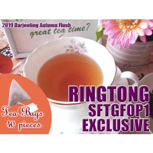 紅茶 ティーバッグ 40個 ダージリン リングトング茶園 オータムフラッシュ SFTGFOP1 EXCLUSIVE DJ430/2019 茶葉 リーフ teachaichai