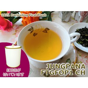 紅茶 ダージリン 茶缶付 ジュンパナ茶園 ファースト FTGFOP1 CH EX13/2021 50g 茶葉 リーフ|teachaichai