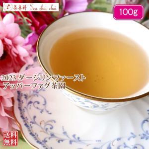 紅茶 ダージリン ジュンパナ茶園 ファースト FTGFOP1 CH EX13/2021 100g 茶葉 リーフ|teachaichai