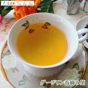 紅茶 茶葉 ダージリン ティチャイチャイ オリジナル ダージリン春摘み茶 50g 茶葉 リーフ|teachaichai