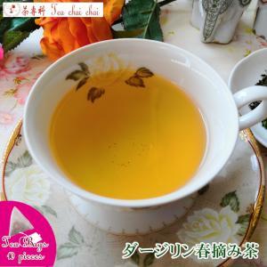 紅茶 ティーバッグ 10個 ダージリン ティチャイチャイ オリジナル ダージリン春摘み茶|teachaichai