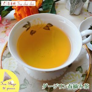 紅茶 ティーバッグ 20個 ダージリン ティチャイチャイ オリジナル ダージリン春摘み茶|teachaichai