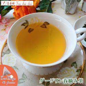 紅茶 ティーバッグ 40個 ダージリン ティチャイチャイ オリジナル ダージリン春摘み茶|teachaichai