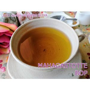 紅茶 茶葉 ヌワラエリヤ マハガストッテ茶園 BOP/2021 50g 茶葉 リーフ teachaichai