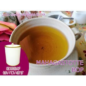 紅茶 茶葉 茶缶付 ヌワラエリヤ マハガストッテ茶園 BOP/2021 50g 茶葉 リーフ teachaichai