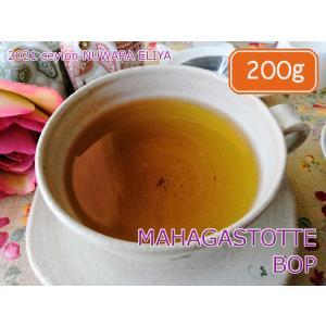 紅茶 茶葉 ヌワラエリヤ マハガストッテ茶園 BOP/2021 200g 茶葉 リーフ teachaichai