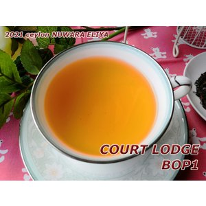 紅茶 茶葉 ヌワラエリヤ コートロッジ茶園 BOP1/2021 50g 茶葉 リーフ teachaichai
