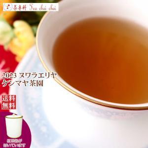 紅茶 茶葉 茶缶付 ヌワラエリヤ コートロッジ茶園 BOP1/2021 50g 茶葉 リーフ teachaichai