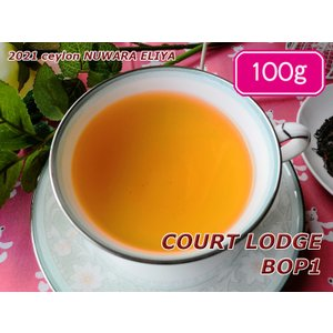 紅茶 茶葉 ヌワラエリヤ コートロッジ茶園 BOP1/2021 100g 茶葉 リーフ teachaichai