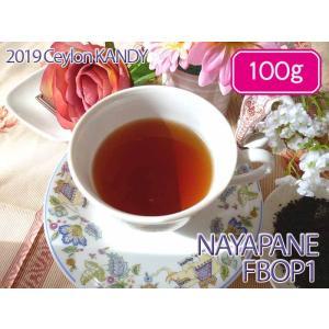 紅茶 キャンディ:ナヤパナ茶園 BOP/2016 100g 茶葉 リーフ 送料無料
