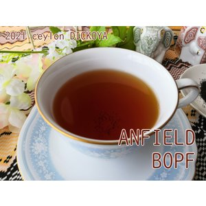 紅茶 茶葉 ディックコヤ アンフィールド茶園 BOPF/2021 50g 茶葉 リーフ teachaichai